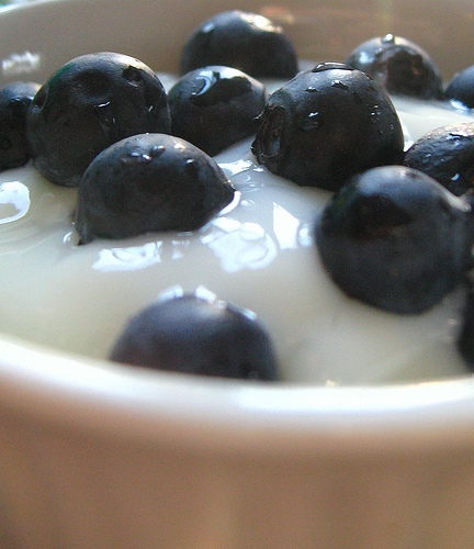 yogurt with blueberries, pic