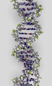 DNA strand, pic