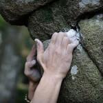 rock climbing hands, pic