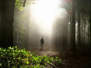 Transform your walk.