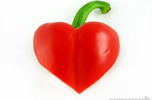 The Latest on Heart Health