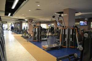 Ask a trainer to introduce you to the Exercise Floor. Don't be intimidated.