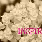 Inspire, pic